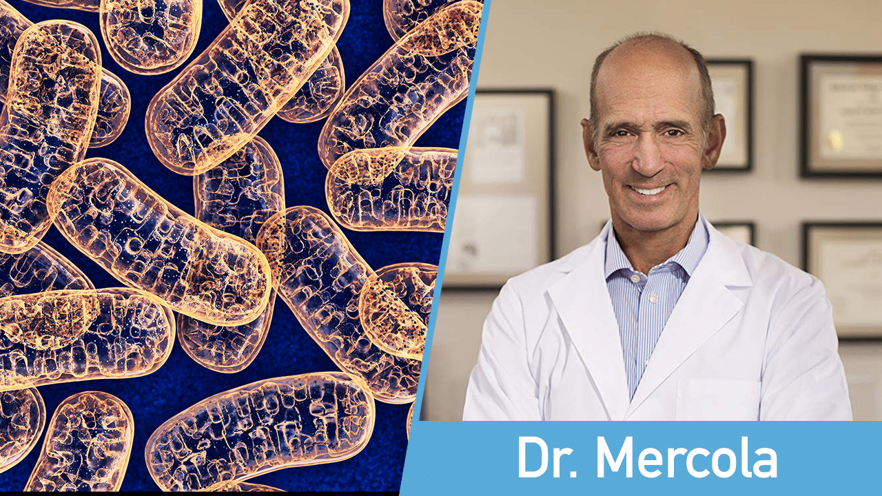 How to Improve Mitochondria Function - Dr Mercola